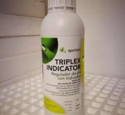 TRIPLEX INDICATOR (1 l.). [R]
