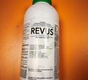 REVUS (1 l.). [IA]