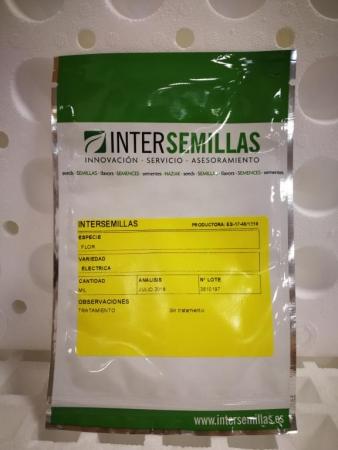 FLOR ELÉCTRICA ACMELLA AMARILLA - Comestible (1000 Semillas)