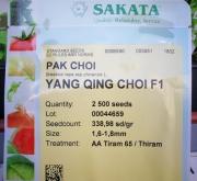 PAK CHOI YANG QING CHOI F-1 (2.500 Semillas)