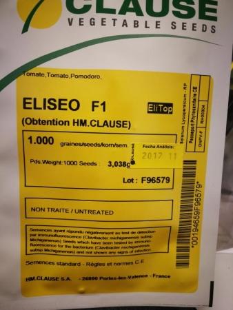 TOMATE ELISEO F1 (1000 Semillas)