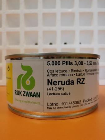 LECHUGA NERUDA RZ Precisión Píldorada (5.000 Semillas)