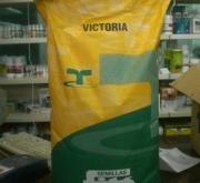 ALFALFA VICTORIA (10 Kgr.).
