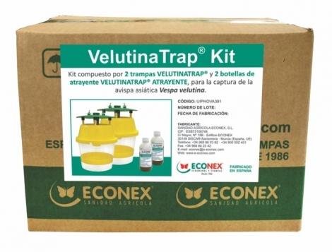 VELUTINATRAP KIT (2 Trampas+2 botellas de atrayente)