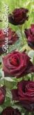 ROSAL RED DEVIL [JJUB] TU-01