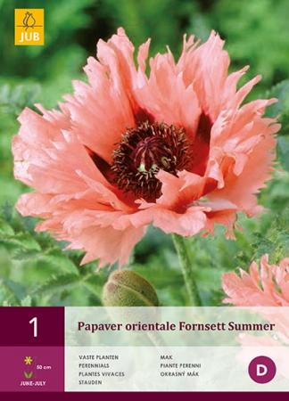 AMAPOLA FORNSETT SUMMER
