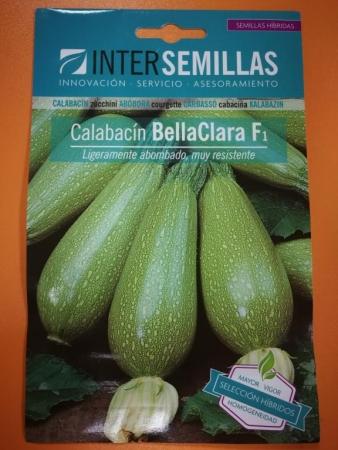 CALABACIN BELLACLARA F-1 (45 Semillas)