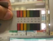 Tiras Papel para Medir Ph de Caldos Fitosanitarios