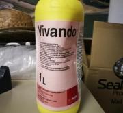 VIVANDO (1 l.) [IA]