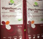 VIGORHUMUS H-00 (25 Kgr.).