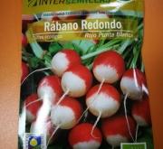 RABANITO ROJO REDONDO PUNTA BLANCA ECOLÓGICO (100...