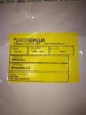 BROCULI SPIGARIELLO - PARA BROTES (500 gr.).