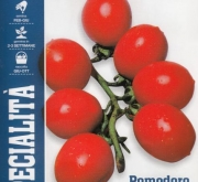 TOMATE LILLY F-1 (1000 Semillas)