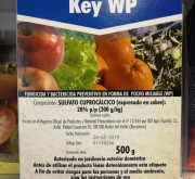 CALDO BORDELES KEY (500 gr.). [JED]