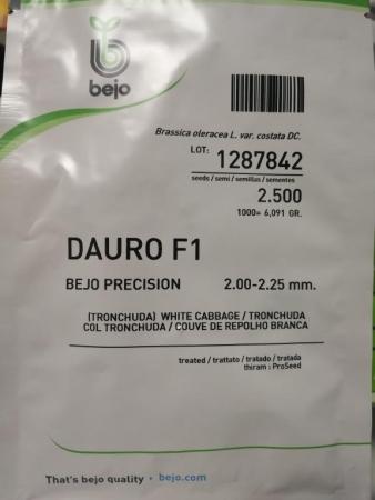 COL DAURO F-1 dGS-Precisión (2.500 Semillas)