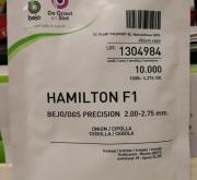 CEBOLLA HAMILTON F-1 Precisión (10.000 Semillas)