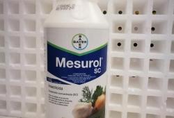 MESUROL SC (1 l.).