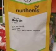 MELON MEDELLIN F1 (1000 Semillas)