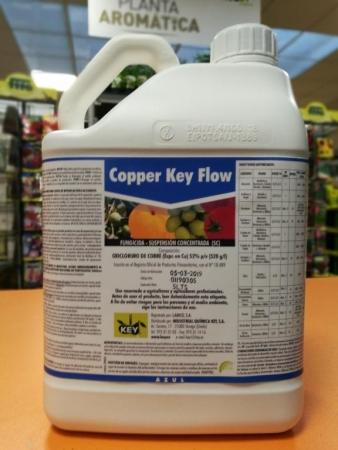 COPPER FLOW KEY (AZUL) ( 5 l.).