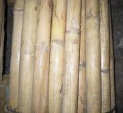 FARDO DE CAÑAS 1,90 (1,70-2,00 m.) (20 Unidades).
