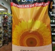 GIRASOL PRIMOLI - Cal. 13 Kgr (150.000 Semillas)