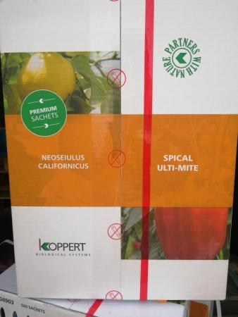 ULTI-MITE SPICAL/ 500 (Caja 500 sobres)
