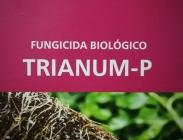 Fitosanitarios Biológicos