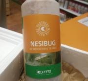 NESIBUG 1000 (Botella 500 c.c.)