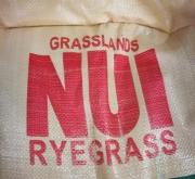 RAY GRASS INGLÉS NUI (25 Kgr. - Mínimo 7 Sacos).