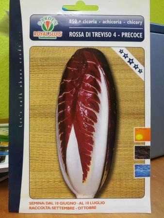 ACHICORIA ROJA DE TREVISO 4 PRECOZ (Cerca de 1,5 gr.).