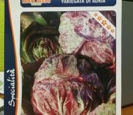 ACHICORIA VETEADA DE ADRIA (1,5 gr.).