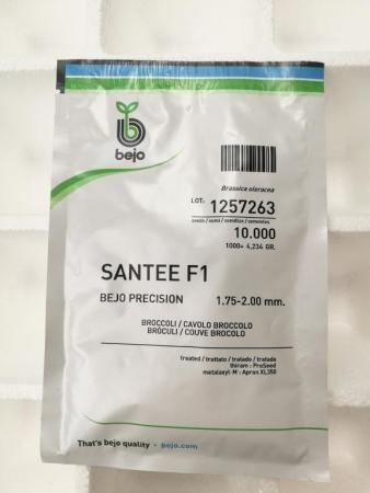 BROCOLI SANTEE F1 Precisión (10.000 semillas)