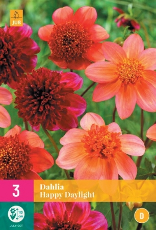 DALIA HAPPY DAYLIGHT XXL