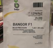 ZANAHORIA BANGOR F1 ECOLÓGICA Precisión Cal. 1.6 -...