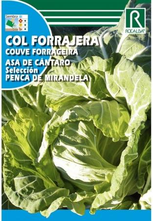 COL ASA DE CANTARO SEL. PENCA MIRANDELA (10 gr.).
