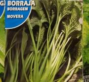 BORRAJA MOVERA (2 gr.)