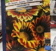 GAZANIA CHANSONETTE (0,25 gr.).
