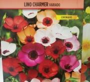 LINO CHARMER VARIADO (0,20 gr.).