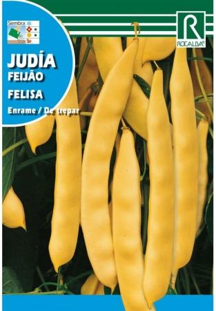 JUDIA FELISA (30 gr.).