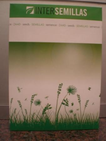 AGROPYRUM CRISTATUM (1 Kgr.).