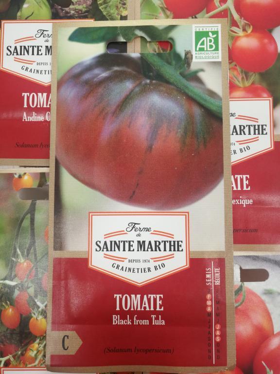 como cultivar tomate molesto de santiago