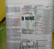 B NINE (1 Kgr.) [IA]