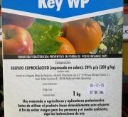 CALDO BORDELES KEY WP (1 Kgr.) - Mínimo 12 Kgr.