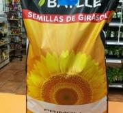 GIRASOL PRIMOLI (150.000 Semillas) - Mínimo 3...