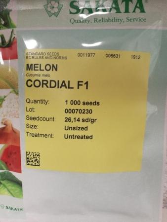 MELON CORDIAL F1 (1.000 Semillas)