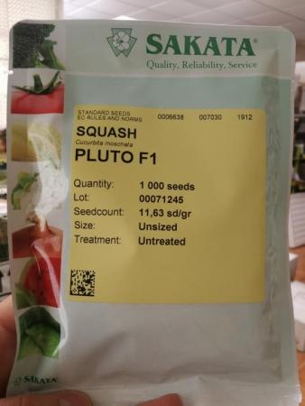 venta de semillas de calabazas
