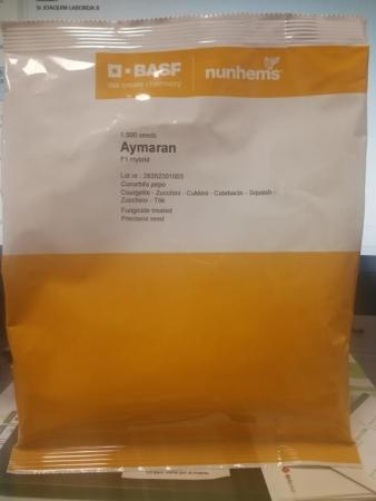 CALABACIN AYMARAN F1 (1.000 Semillas)