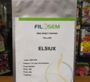 PIMIENTO ELSIUX F1 (500 Semillas)