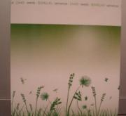 RAY GRASS WESTERWOLD KAJANA ECOLÓGICO (1 Kgr.).