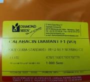 CALABACIN DIAMANTE F1 (1.000 Semillas)